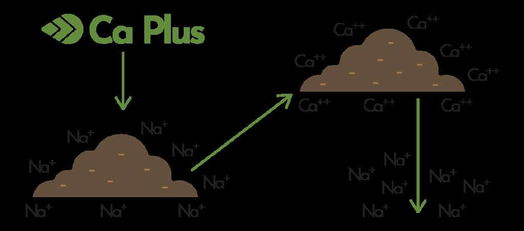 ca-plus-calcium-fertilizer