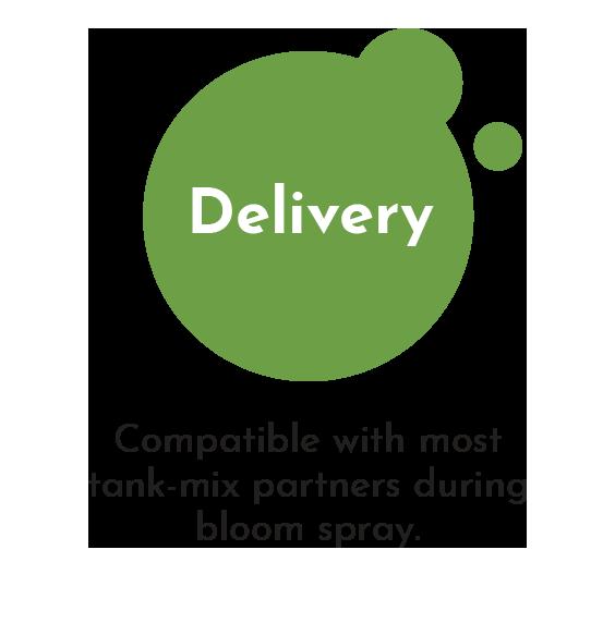 micro-flo-delivery